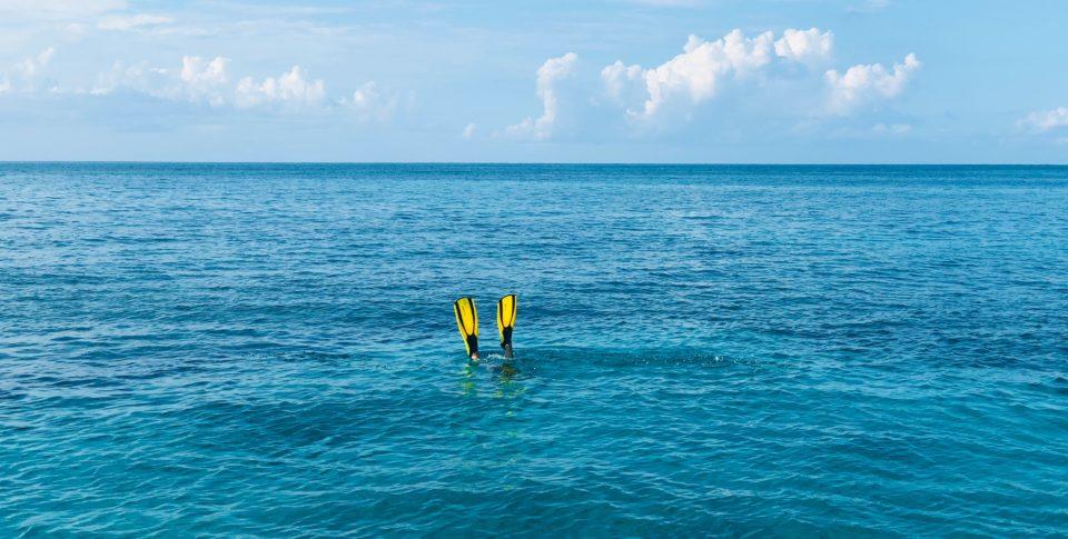 scuba fins in ocean